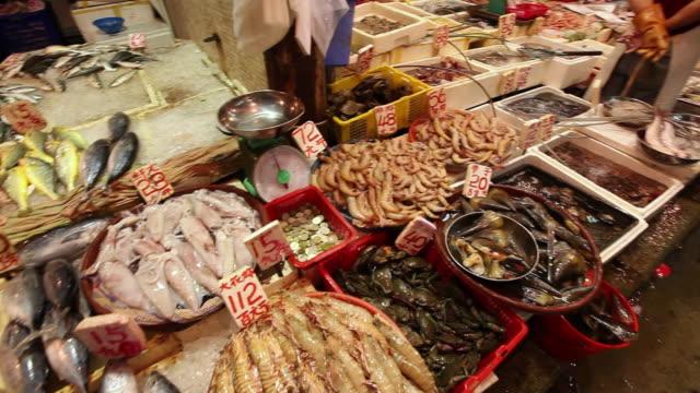 ms pan tu td shot of seafood at market / hong kong, china - kina bildbanksvideor och videomaterial från bakom kulisserna
