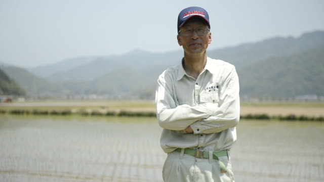 MS Shot of Senior Man stands in footpath between rice fields / Toyooka, Hyogo, Japan
