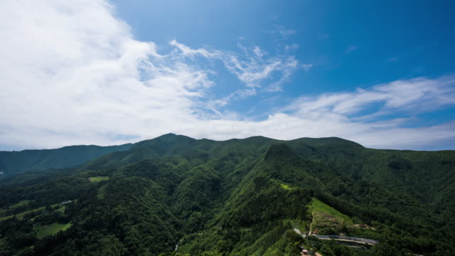 shot of seokpo dulle gil (seokpo forest trail) at seonginbong mountain in ulleungdo island - north gyeongsang province stock videos and b-roll footage