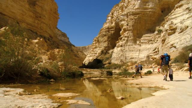 ms shot of several people walking through rocky canyon / sde boker, negev desert, israel - negev stock videos & royalty-free footage
