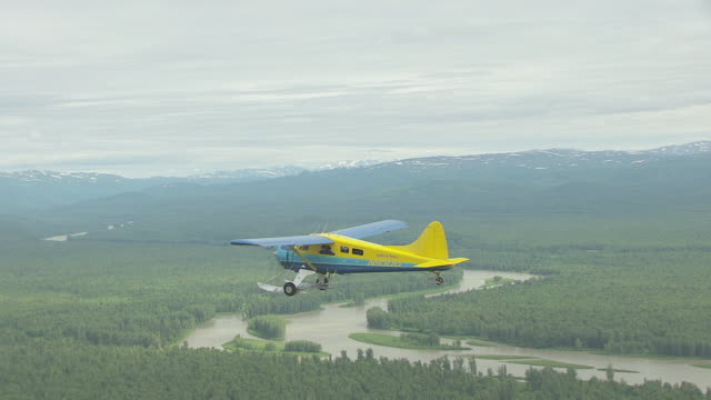 ms aerial ts shot of sheldon air beaver flying en route to denali over forests and chulitna river / alaska, united states - denali national park stock videos & royalty-free footage