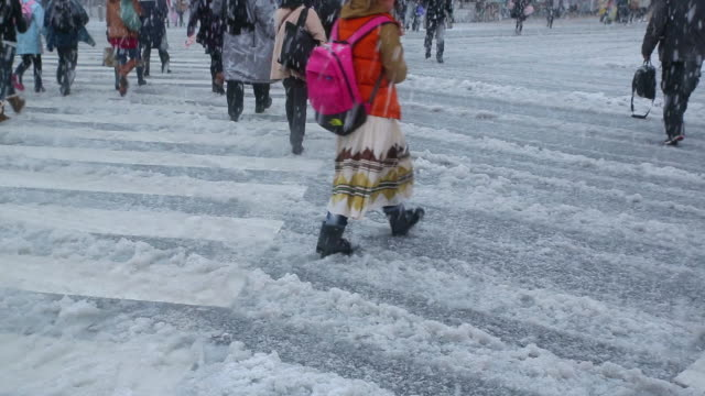 ms shot of shibuya crossing at snowy day and people crossing street / shibuya, tokyo, japan - 雪点の映像素材/bロール