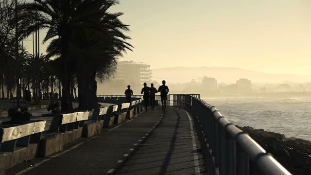 ws shot of silhouette people jogging at promenade at parc de la mar / palma de mallorca, mallorca, balearic islands, spain - promenade stock videos & royalty-free footage