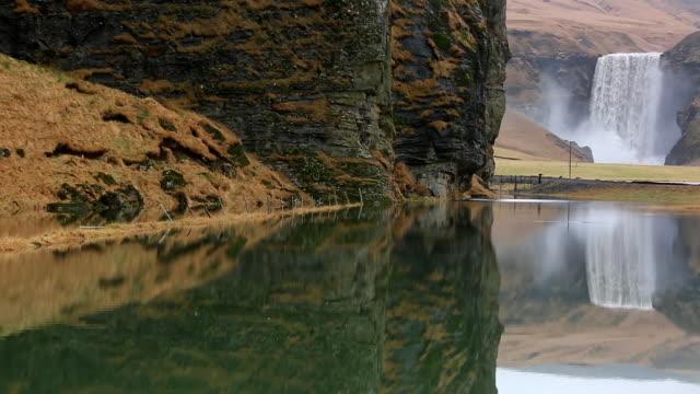 ms tu shot of skogafoss falls which reflected in lagoon / iceland - gruppo medio di animali video stock e b–roll