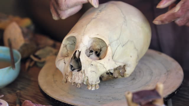 cu shot of skulls of paracas / south of peru, nazca, peru - skull stock videos and b-roll footage