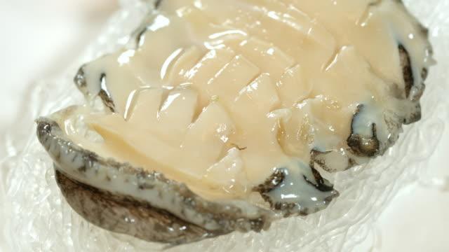 Shot of slice of Abalone