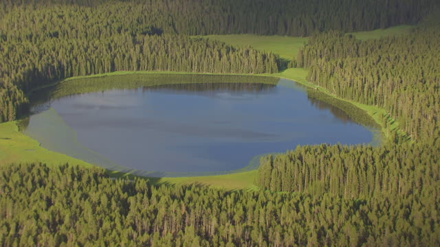 MS AERIAL TS Shot of Small Hayden Valley pond in Yellowstone National Park / Wyoming, United States