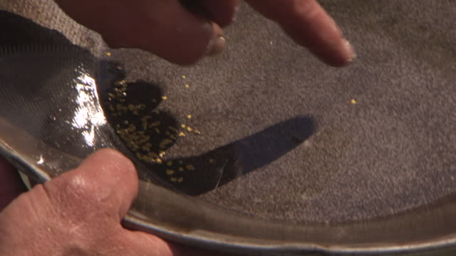 ecu shot of small nuggets of gold can be seen as man moving his pan around with water at el dorado gold mine / fox, alaska, united states - panning stock videos & royalty-free footage
