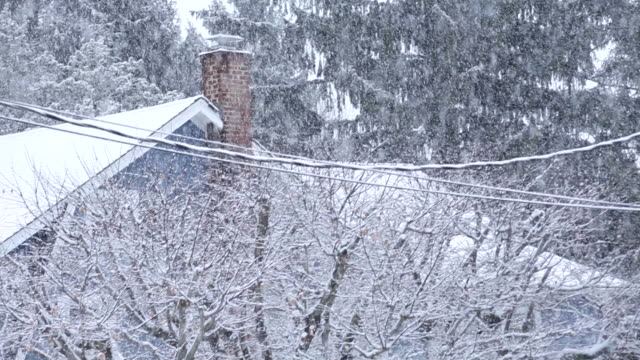 MS TD Shot of snow falling on trees and rural home / High Bridge, New Jersey, United States