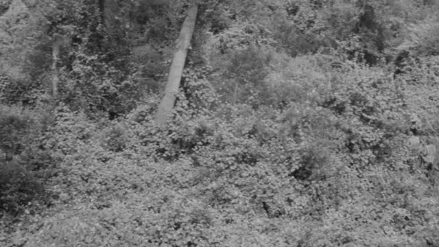 ws pan shot of soldiers running through clearing, thick brush and japanese soldier in tree - traditional helmet stock videos and b-roll footage