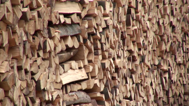 CU Shot of stacked firewood in forest / Orscholz, Saarland, Germany