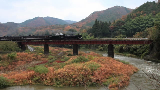 ms shot of steam locomotive / yamaguchi, yamaguchi prefecture, japan - lokomotive stock-videos und b-roll-filmmaterial