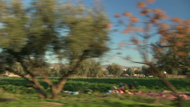 stockvideo's en b-roll-footage met ms pod shot of streets and city sides / casablanca, centro, morocco - wiese