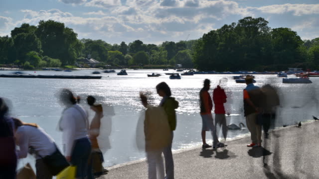 ms t/l shot of summer serpentine hyde park pedal boats move rapidly on water and silhouetted people moving / london, greater london, united kingdom - greater london video stock e b–roll