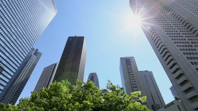 ms shot of sun and skyscrapers behind waving fresh green trees at district of west shinjuku / shinjuku ku, tokyo, japan - オフィスビル点の映像素材/bロール