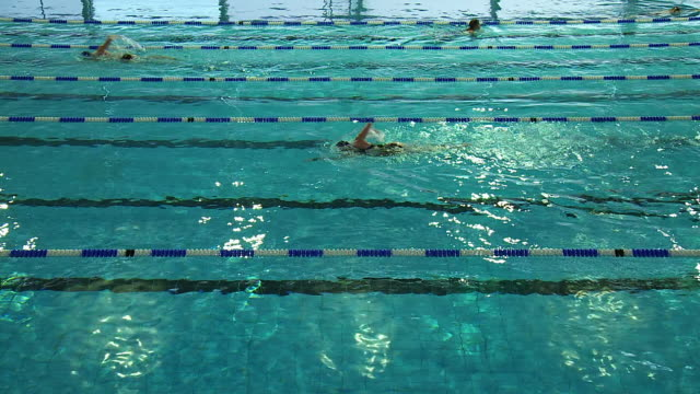 ms t/l shot of swimmers cross paths in in-door swimming pool / london, united kingdom  - piscina pubblica all'aperto video stock e b–roll