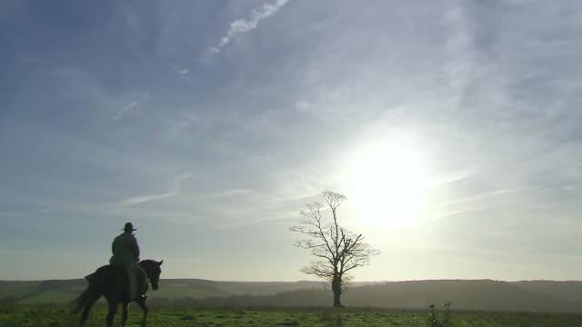 ms shot of teddy roosevelt on horseback in open field / united states - 乗馬点の映像素材/bロール