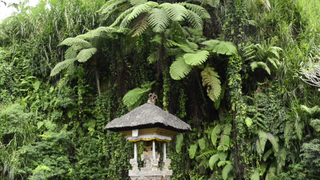 ms td shot of temple of holy spring of pura / gunung kawi, bali, indonesia, asia - acqua santa video stock e b–roll