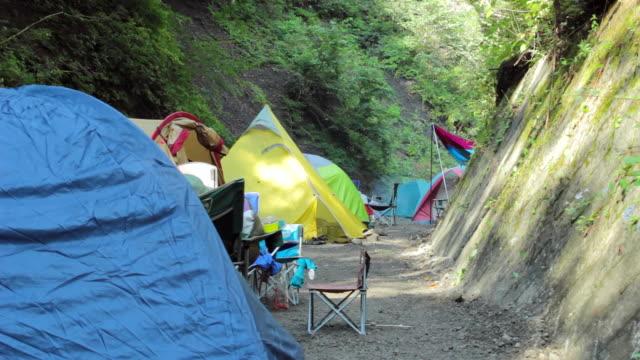 ms shot of tents / okutama, tokyo, japan - キャンプする点の映像素材/bロール