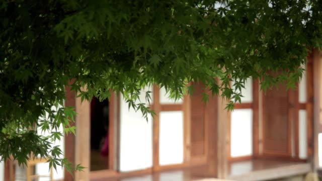 shot of the doors of korean house in jeonju hanongmaeul - ajar stock videos & royalty-free footage