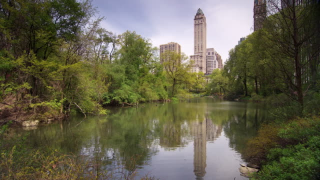 shot of the lake in central park, nyc on a sunny morning. buildings can be seen in the skyline - central park manhattan stock videos & royalty-free footage