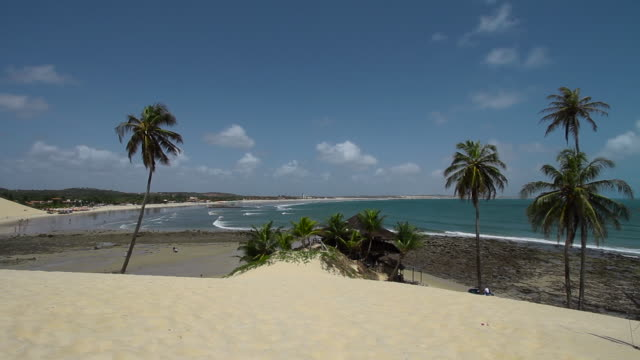 a shot of the sand dune beach with coconut tree and buggy drives along the shore, genipabu beach, natal, brazil - dune buggy stock videos and b-roll footage