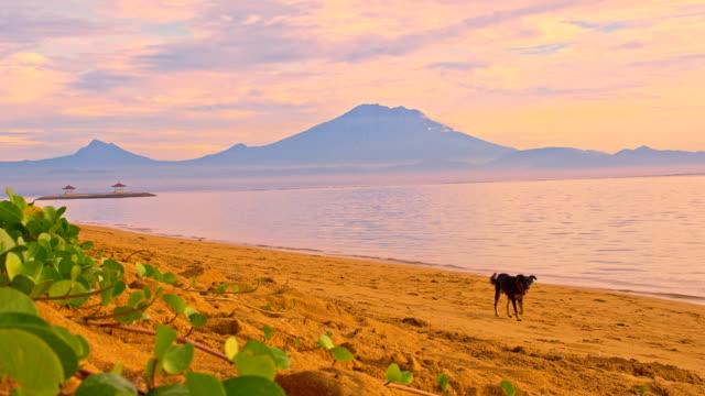 WS plan sur le volcan Gunung Batur de plage de Sanur.