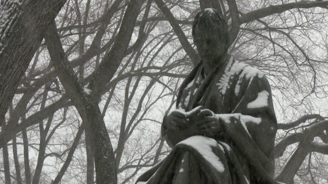 shot of the walter scott statue in central park on a snowy day - literature stock-videos und b-roll-filmmaterial