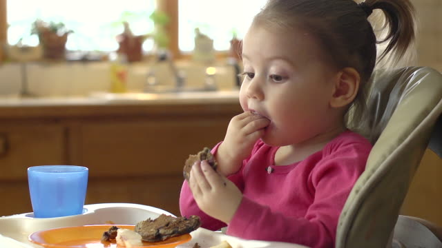 MS Shot of Toddler in high chair pulls apart pancake to get at blueberries / Chelsea, Michigan, United States