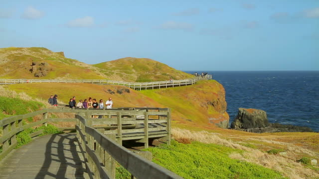 vídeos de stock e filmes b-roll de ms shot of tourists walking along walkway at spectacular coastline near nobbies / phillip island, victoria, australia  - vedação