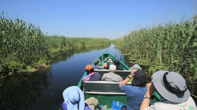 vídeos y material grabado en eventos de stock de ms pov shot of tourists watching birds along danube delta canals / tulcea, danube delta, romania - rumania