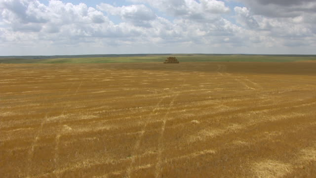 ms aerial shot of track along dry yel hay field and push over pyramid of hay barrels to reveal dry hay field / phillip, south dakota, united states - bale stock videos and b-roll footage