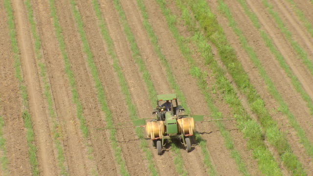 vídeos de stock e filmes b-roll de cu aerial shot of tractor in sugar cane field near evergreen and whitney plantationsn / louisiana, united states - trator