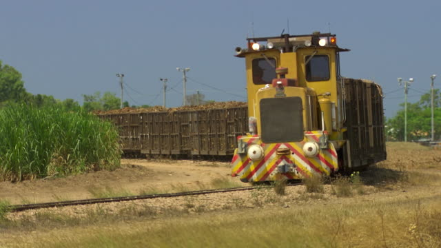 MS Shot of Train comes past with long load of harvested cane / Queensland, Australia