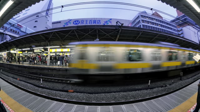 ws t/l shot of trains passing in and out of platform at busy shinjuku station / tokyo, japan - 鉄道のプラットホーム点の映像素材/bロール