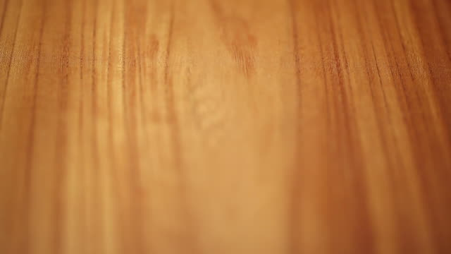ecu shot of tree ring / seoul, south korea - wood grain stock videos and b-roll footage