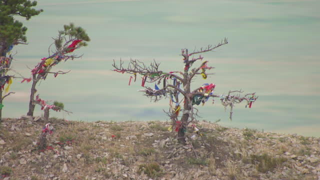 CU AERIAL TS ZO Shot of trees with colorful fabric tied to them and pull back and orbit trees at Bear Butte in Meade County / South Dakota, United States