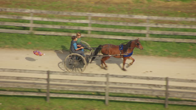 MS R/F TS ZO AERIAL Shot of two Amish boys riding horse drawn carriage with balloon trailing behind on dirt road / Bergholz, Ohio, United States