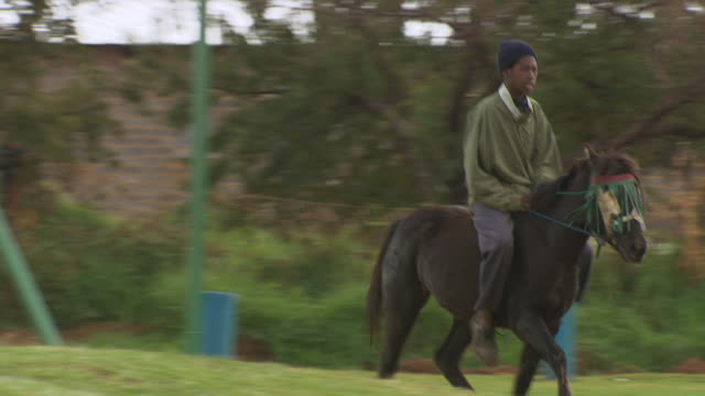 shot of two boys riding horses passing by / durban south africa - durban stock videos & royalty-free footage