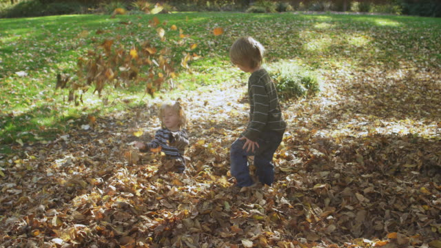 WS TS SLO MO Shot of two boys running and jumping into pile of leaves and then tossing them in air / Hillsboro, Oregon, United States