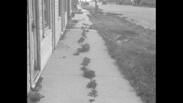 vídeos de stock, filmes e b-roll de shot of two deserted stores / shot of deserted cafe / sidewalk with weeds growing up through it in deserted town / two closeups of unemployed farmer... - 1936