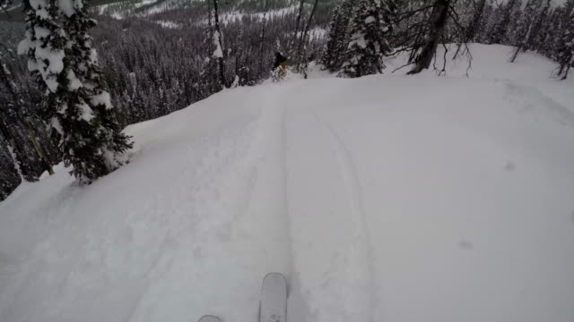 A POV shot of two friends skiing through the trees in the mountains of Montana - 4k