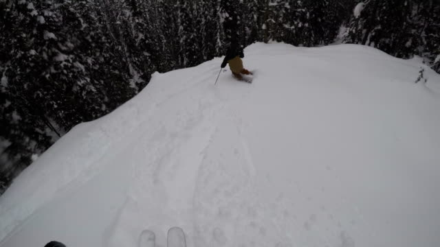 a pov shot of two friends skiing through the trees in the mountains of montana - 4k - skijacke stock-videos und b-roll-filmmaterial