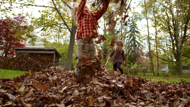 WS SLO MO Shot of two kids playing in leaves / Tivoli, New York, United States