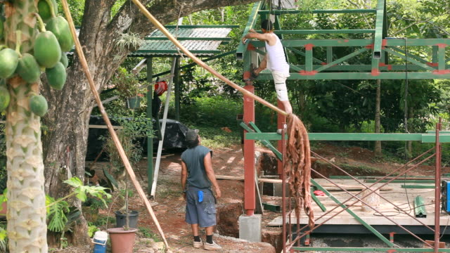 vídeos de stock, filmes e b-roll de ms shot of two latin american construction workers, one measuring post while standing on frame and other on ground speaking to him and papaya tree besides / montezuma, punteranes, costa rica - kelly mason videos