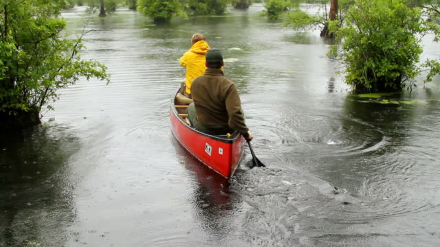 stockvideo's en b-roll-footage met ws tu shot of two men's paddling boat in swampy river in rain / manteo, north carolina, united states - wiese