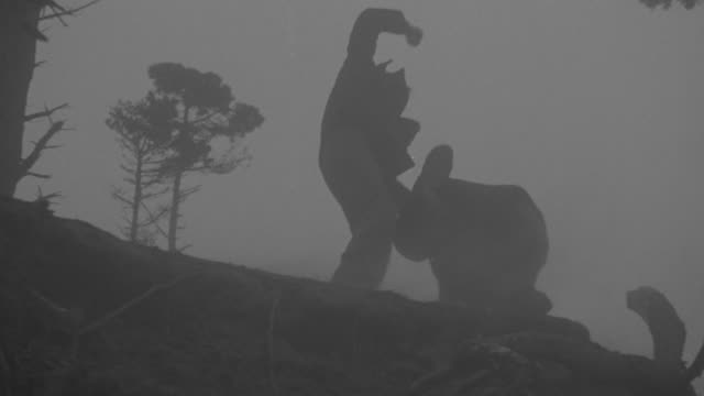 vídeos de stock e filmes b-roll de ms la pan shot of two people fighting at mountain hill - bandido