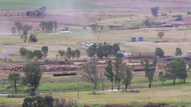 WS Shot of two truck driving on road away from cattle farm / Roma, Queensland, Australia