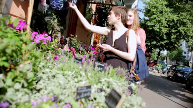 """vídeos de stock e filmes b-roll de """"ms r/f shot of two young women looking at flowers in front of shop / berlin, germany"""" - florista"""