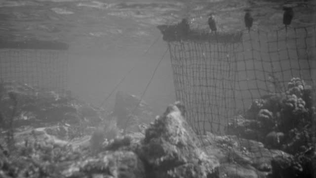 ms shot of underwater mines and submarines - land mine stock videos and b-roll footage